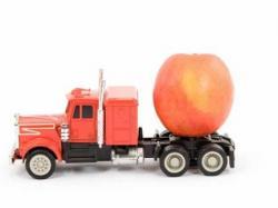 cibo trasporto