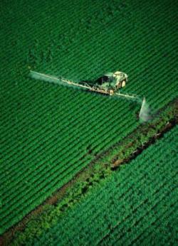campi fertilizzanti pericoli