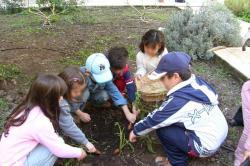 orto scuole bambini